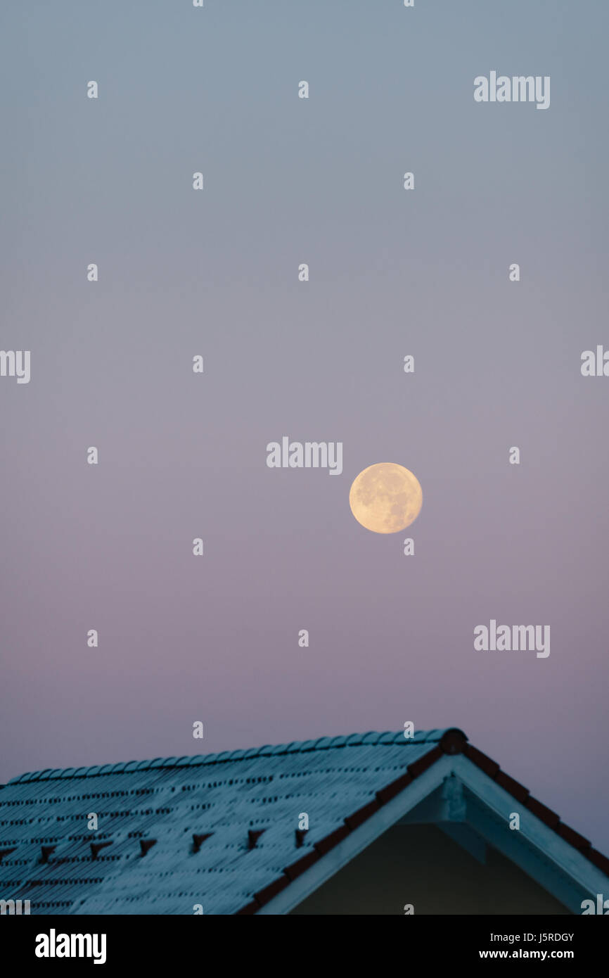 Supermoon during a violet sunrise over a roof - Stock Image