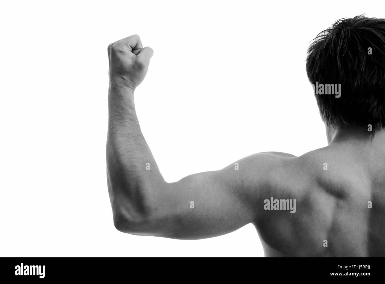 biceps - Stock Image