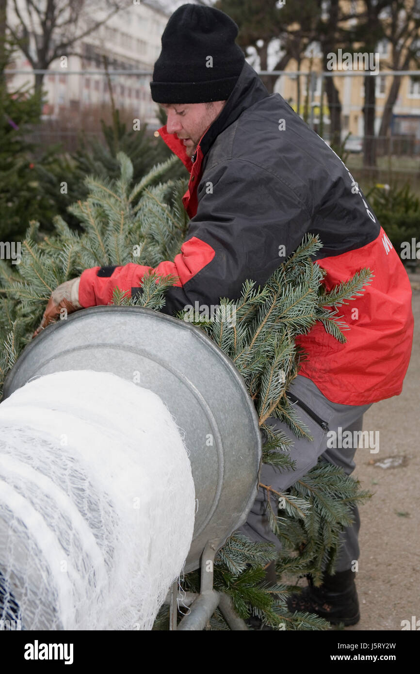christmas tree sale Stock Photo