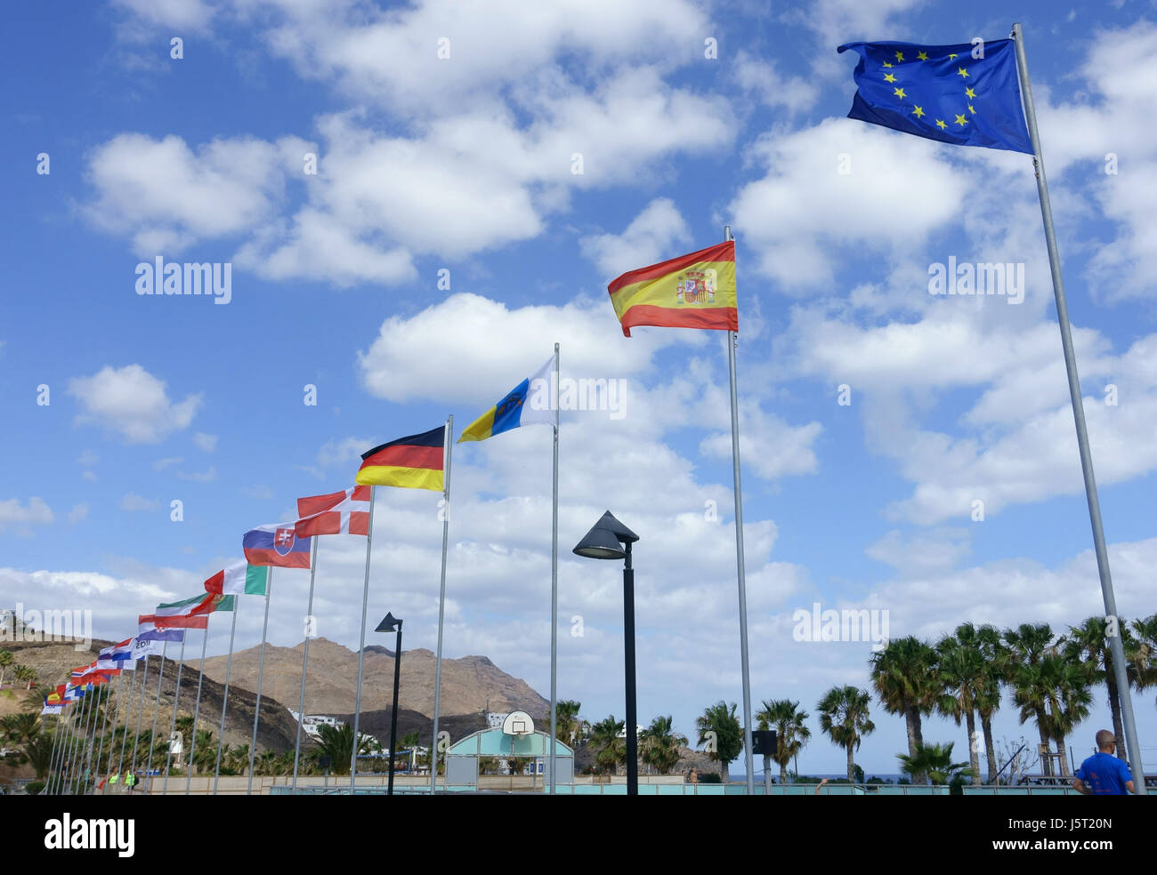 the flags of the European Union - Stock Image