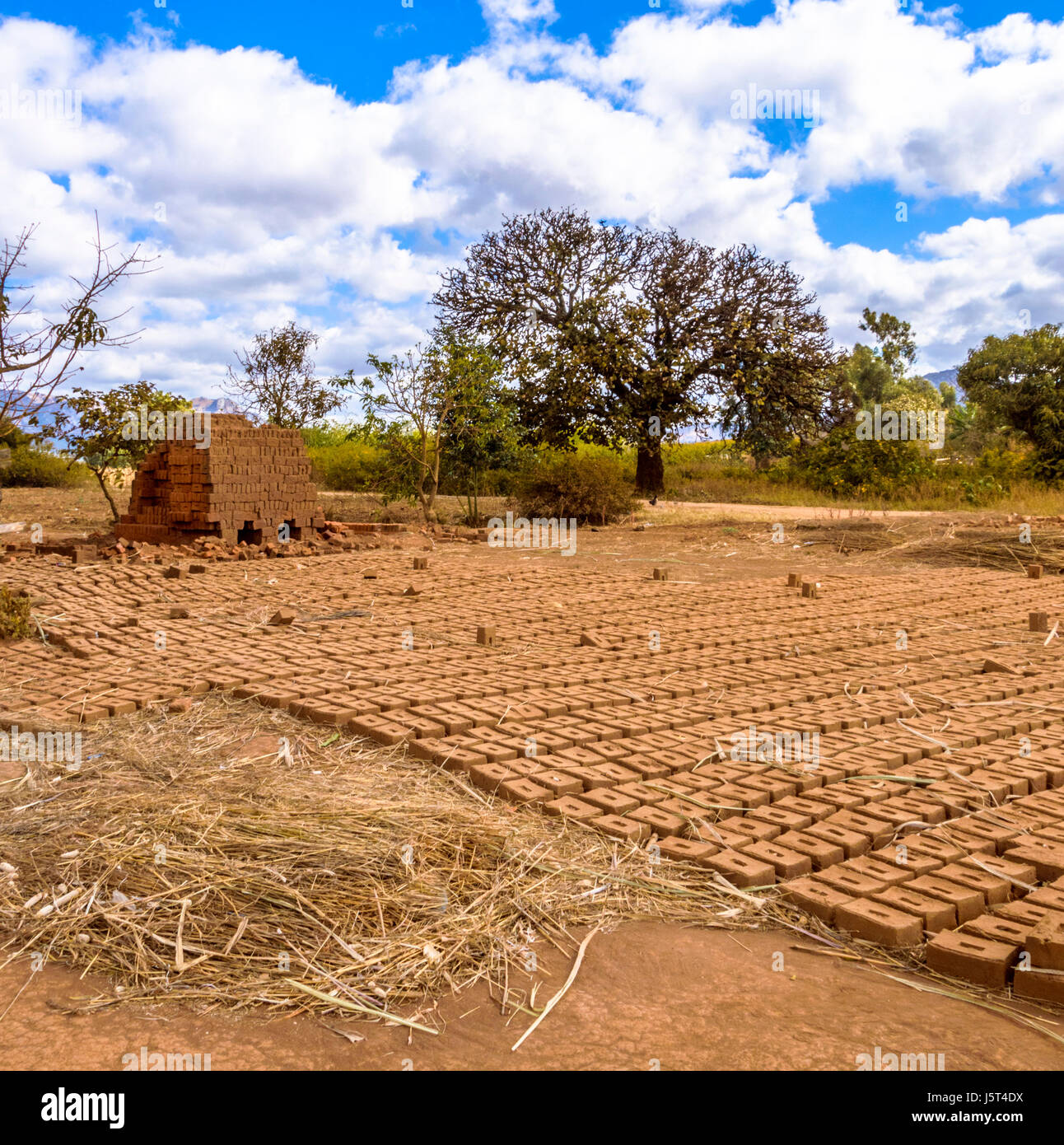 Hand made mud bricks drying in the sun in front of a kiln for burning bricks in a rural village in Malawi, Africa - Stock Image