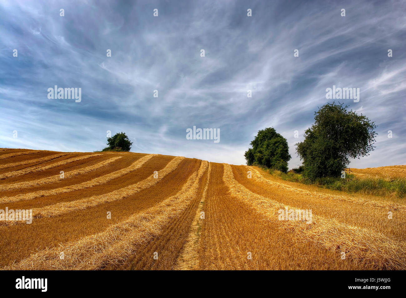 summer summerly lines acre colour mowed effective area colors colours clouds - Stock Image