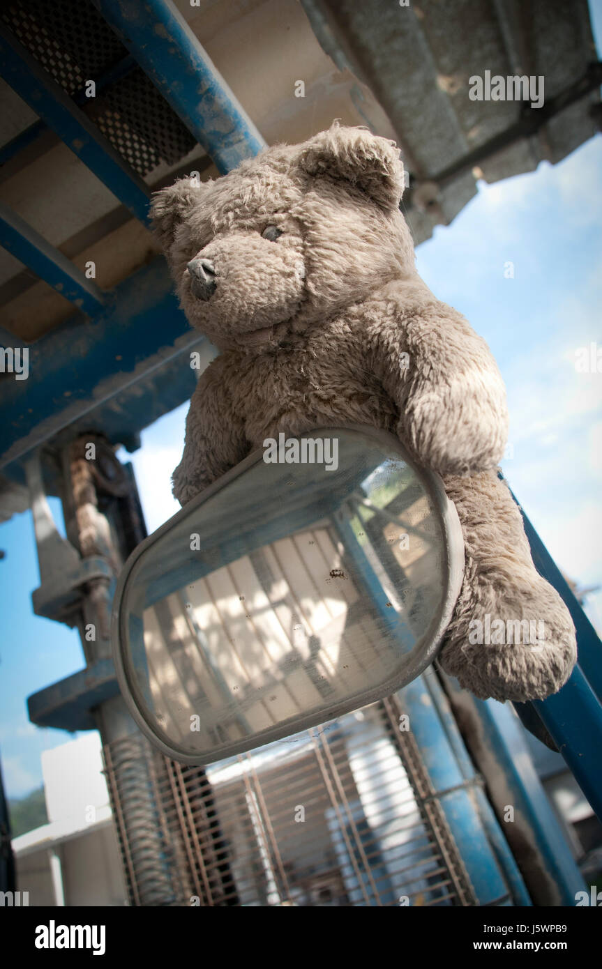 A teddy bear on a tractor. - Stock Image