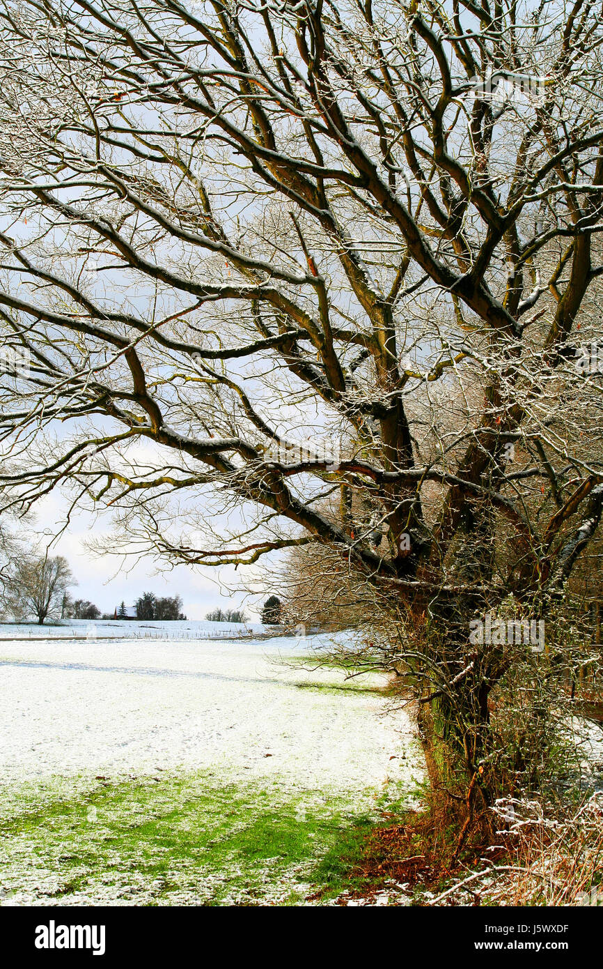 late winter Stock Photo