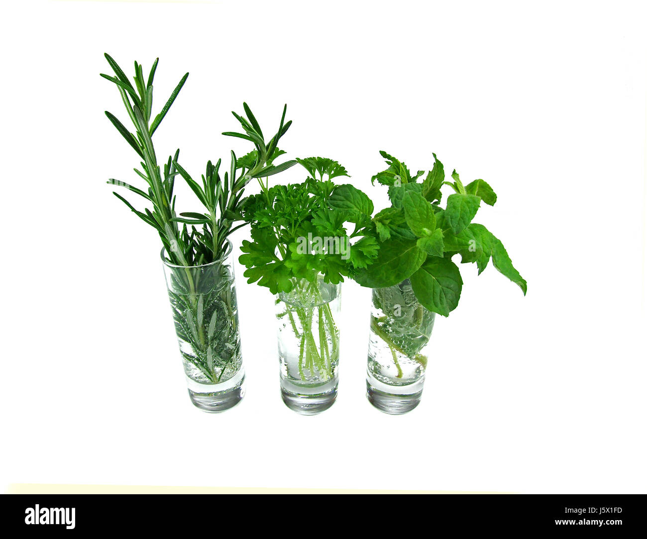 spice herbs spice sage means agent medicine drug remedy substance parsley Stock Photo