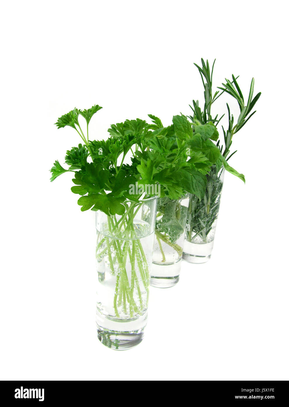spice mint parsley herbs spice means agent medicine drug remedy substance Stock Photo
