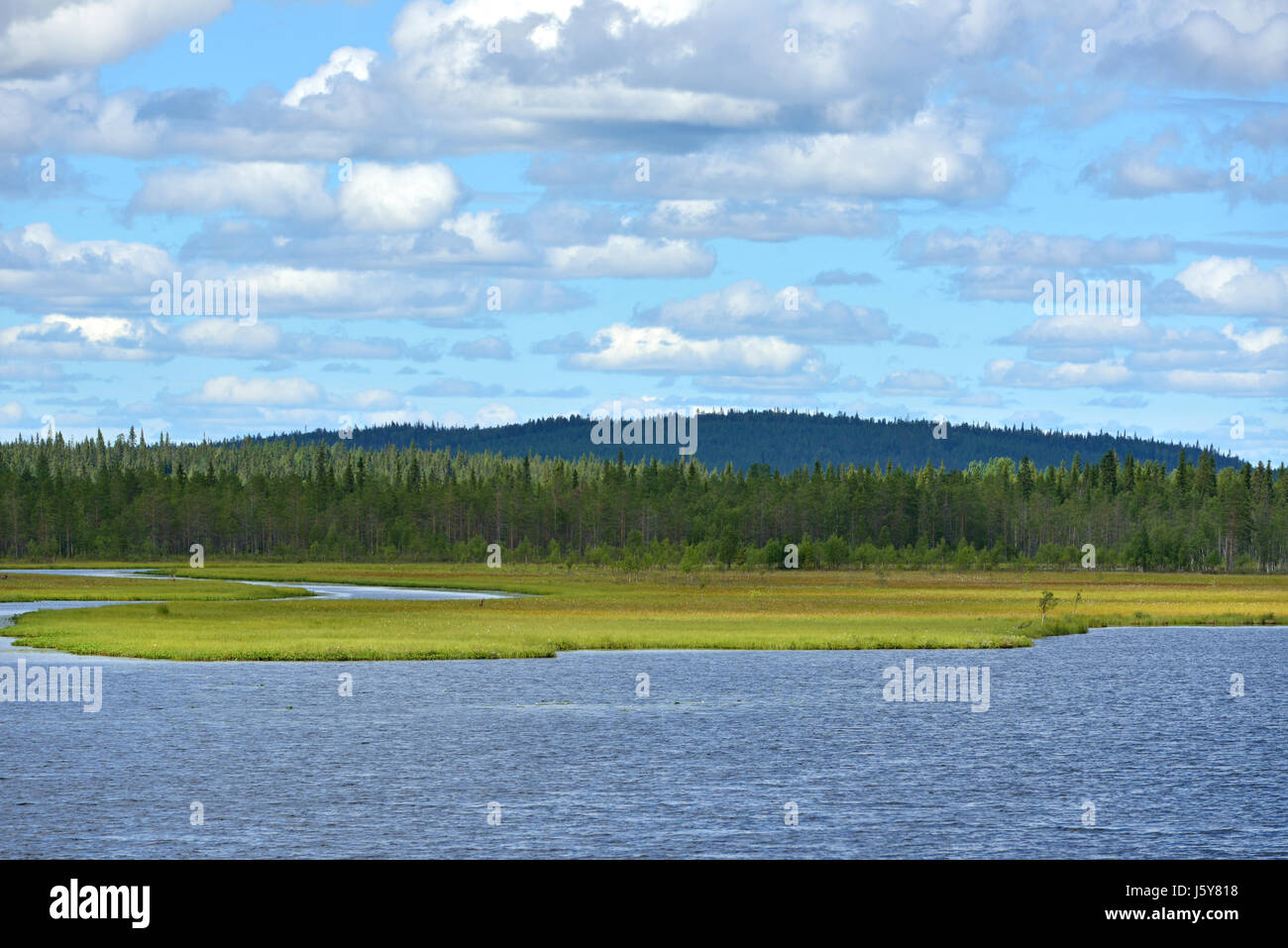Northern landscape. River and marshy banks. Finnish Lapland - Stock Image