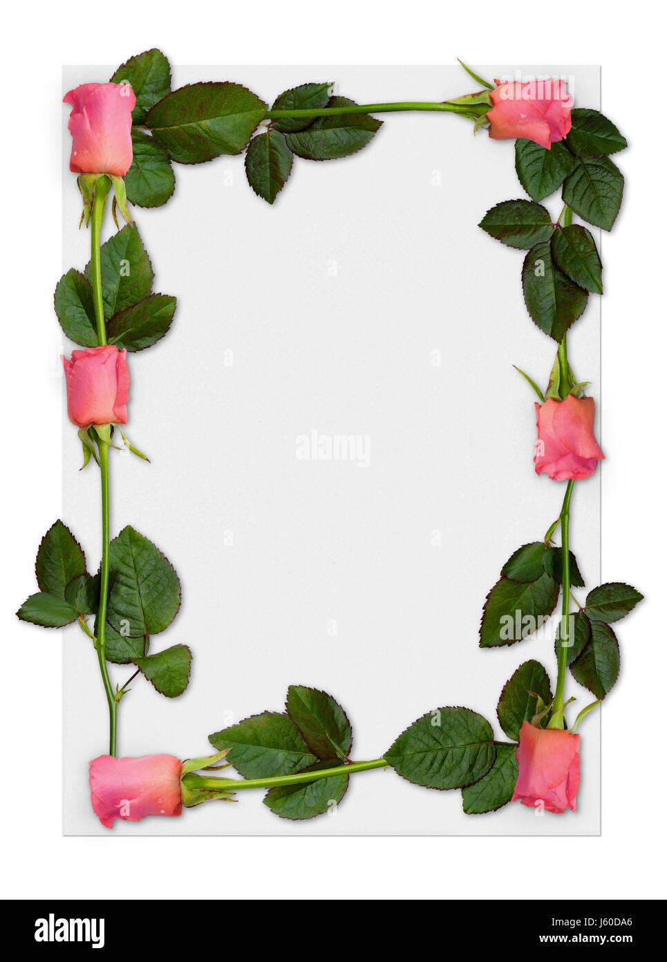romantic roses letter frame love in love fell in love backdrop Stock ...