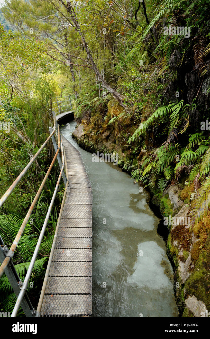The Pupu Hydro walkway follows an old gold-mining water race. It was subsequently re-used for generating hydro electric - Stock Image