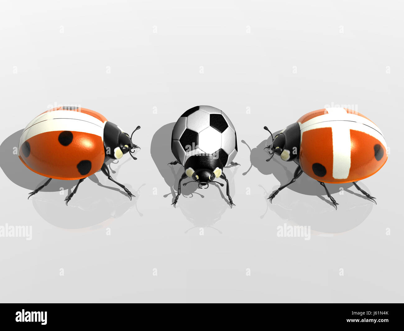 isolated beetle illustration gag ladybug isolated joke beetle illustration - Stock Image