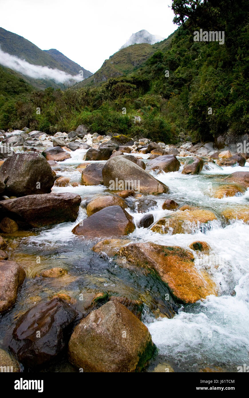 flow in the yungas - Stock Image