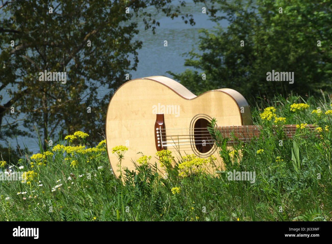 music guitar stringed instrument meadow nature wandergitarre akusrikgitarre - Stock Image