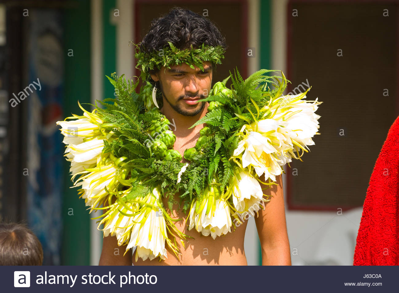 Man dressed as a hawaiian priest wearing a garland of night blooming man dressed as a hawaiian priest wearing a garland of night blooming cirrus before the start of the 33rd annual waimea paniolo parade church road wa izmirmasajfo