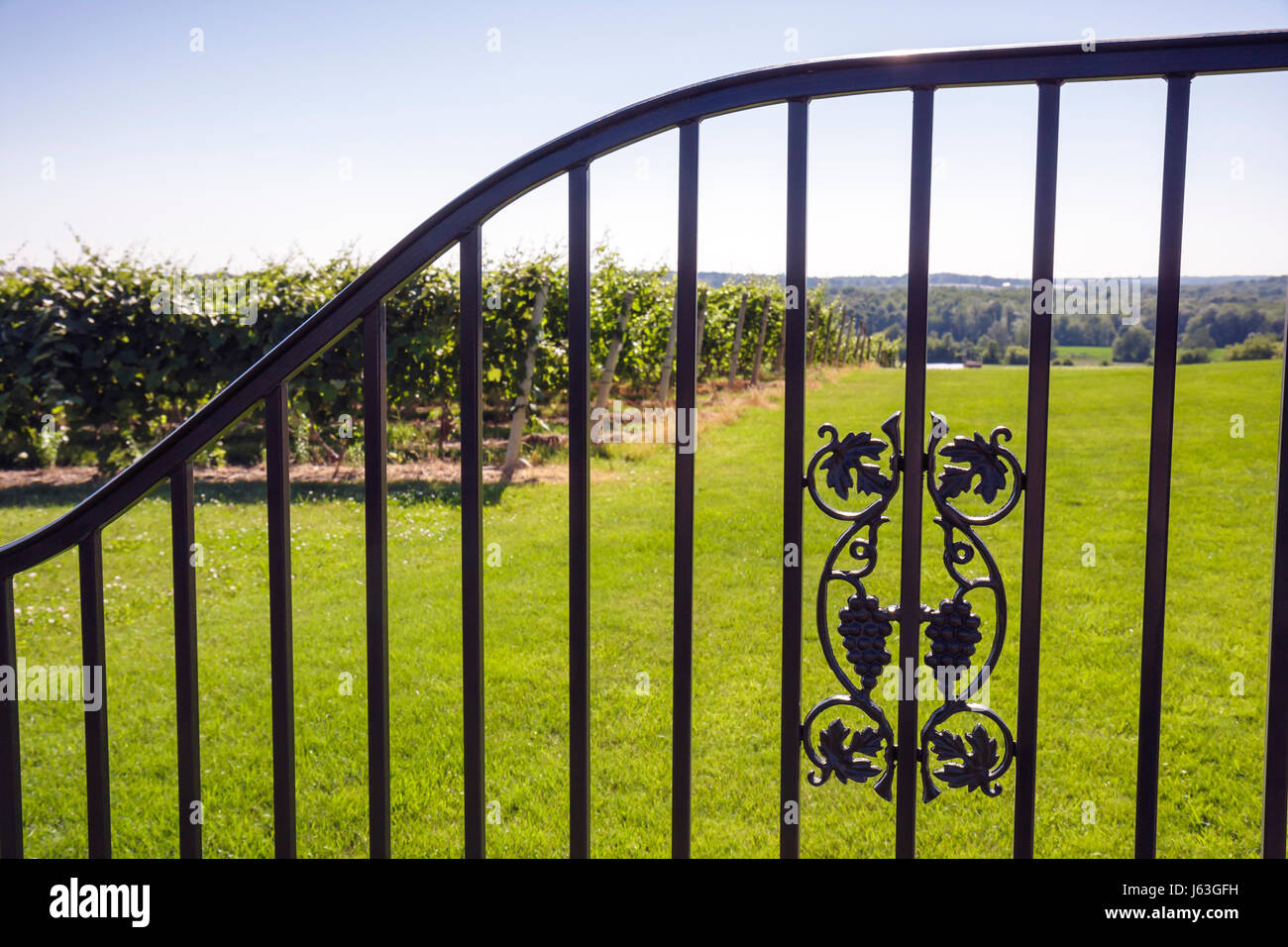 Michigan Coloma Karma Vista Vineyards and Winery grapes farm agriculture estate bottled wine viticulture iron gate - Stock Image