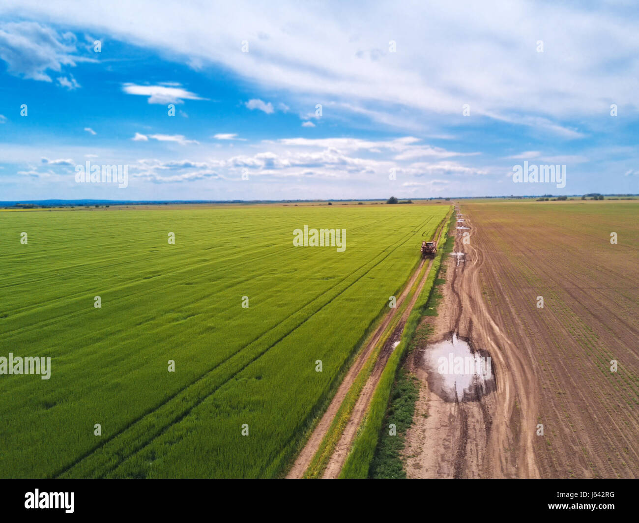 Tractor on country road through wheat field, aerial view from drone pov - Stock Image