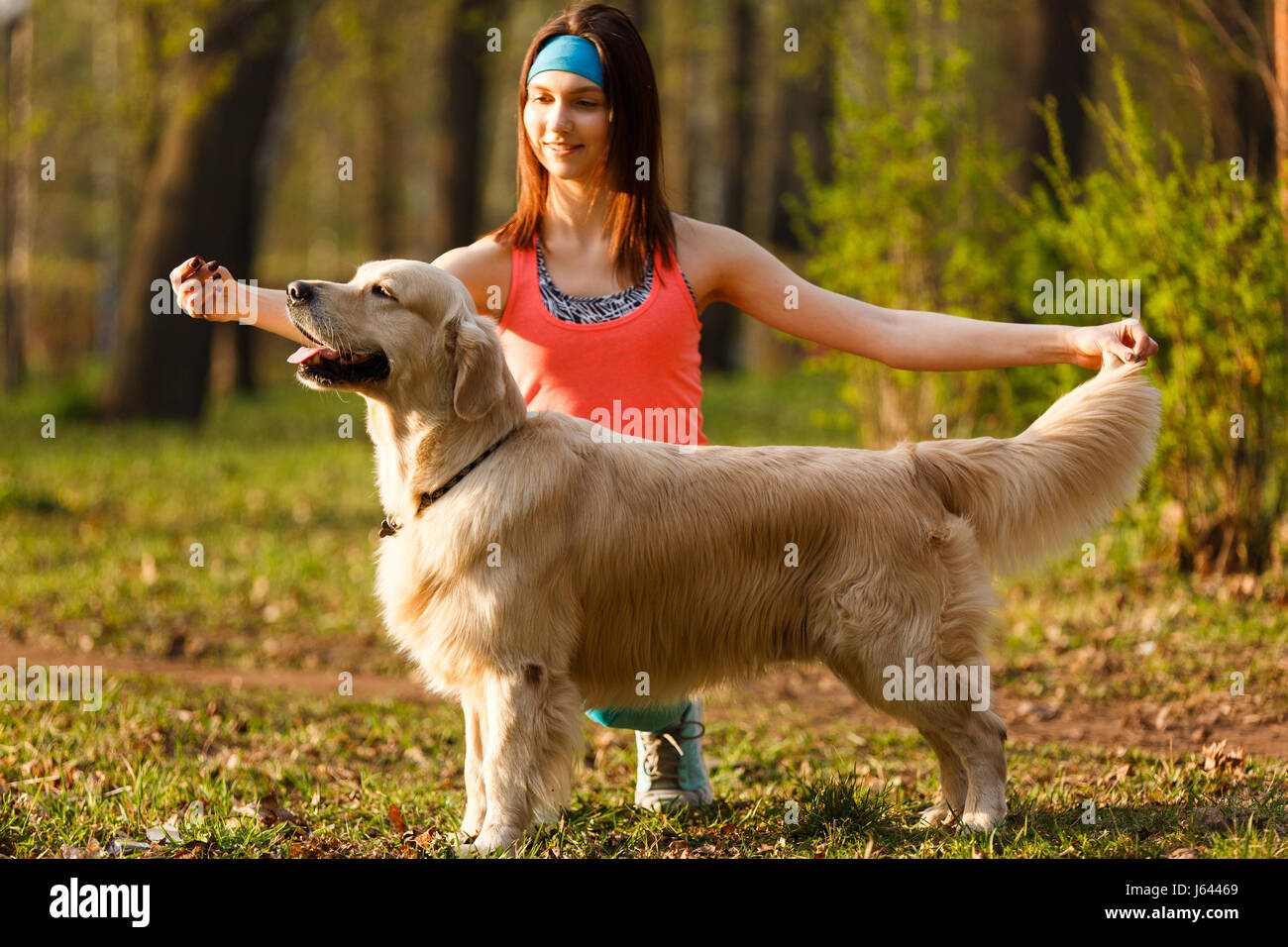Woman teaching dog in park - Stock Image