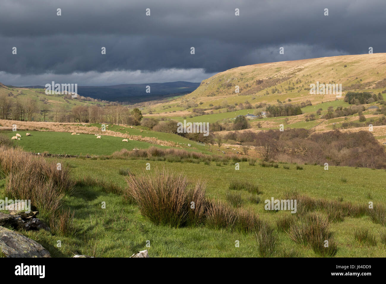unusual weather in the Conwy valley (heavy rain in the lower valley with sunshine in the upper pastures) Snowdonia - Stock Image