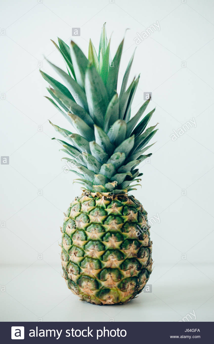 Pineapple fruit studio shot - Stock Image