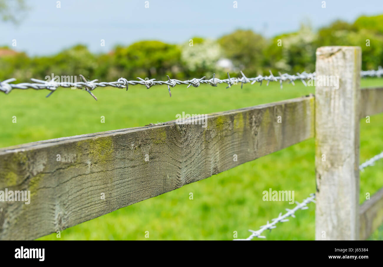 Barbed wire on a wooden fence surrounding a field in the countryside. - Stock Image