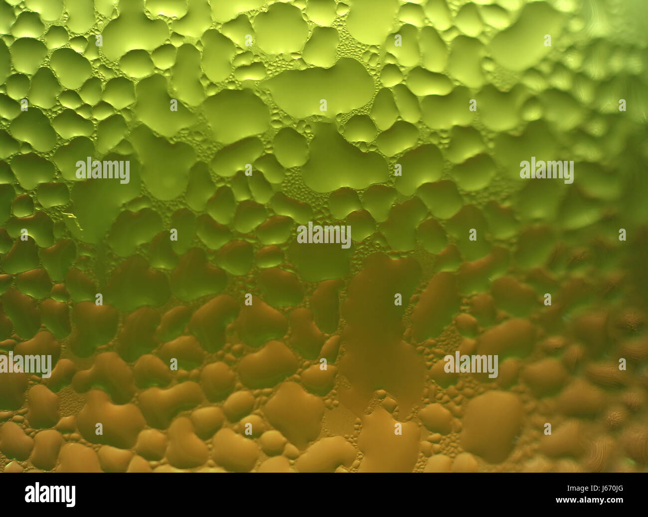 Macro shot of water drops texture on the green and orange two-tone glass, for abstract background with selective - Stock Image