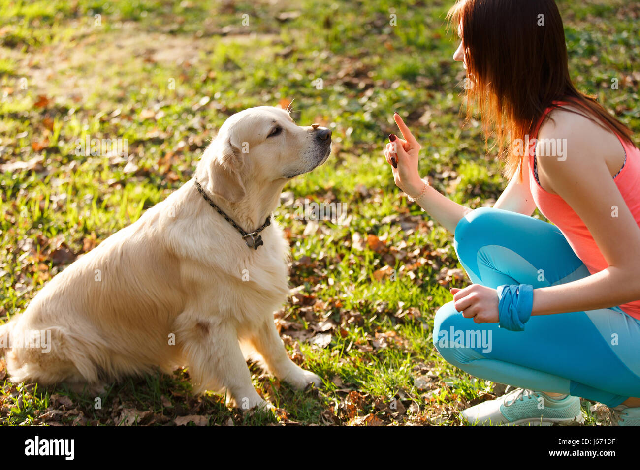 Woman and dog in park - Stock Image