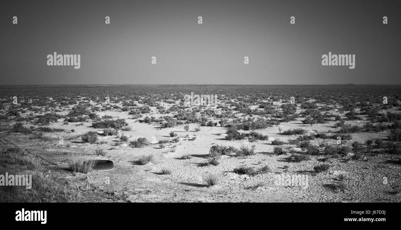 Desert shrubs and an old tire in a vast desert near Delta, Utah, USA. - Stock Image
