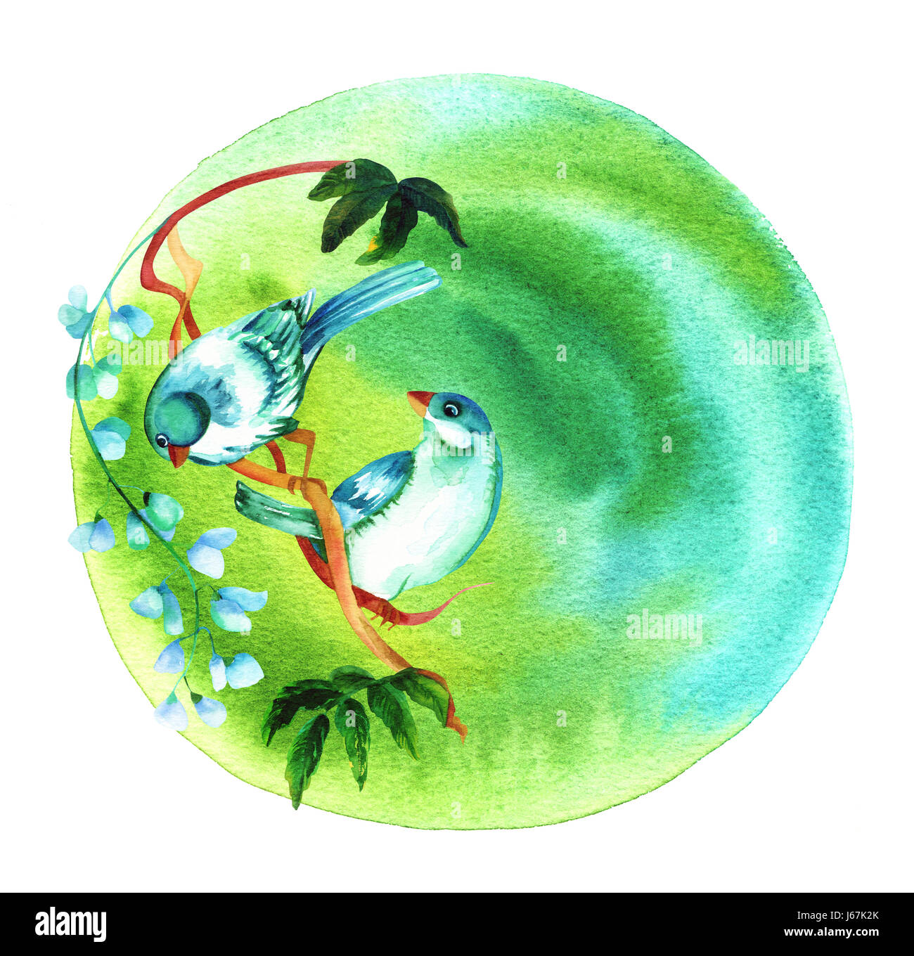 A couple of vibrant watercolour birds on a circular green abstract background texture, with a place for text, a - Stock Image