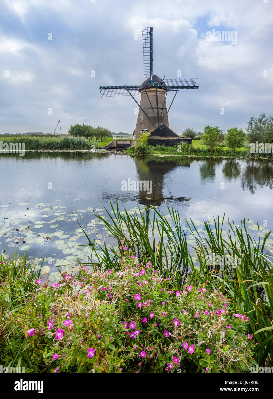 South Holland, Kinderdijk in the municipality of Molenwaard, windmill at the the polder - Stock Image