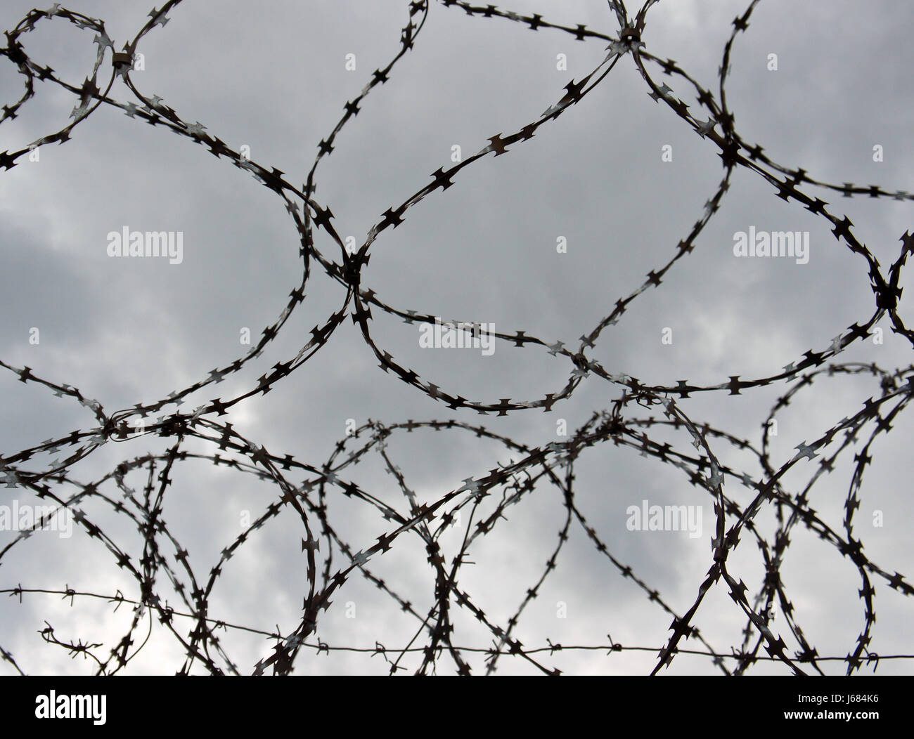 Barbed wire on a cloudy sky background - Stock Image