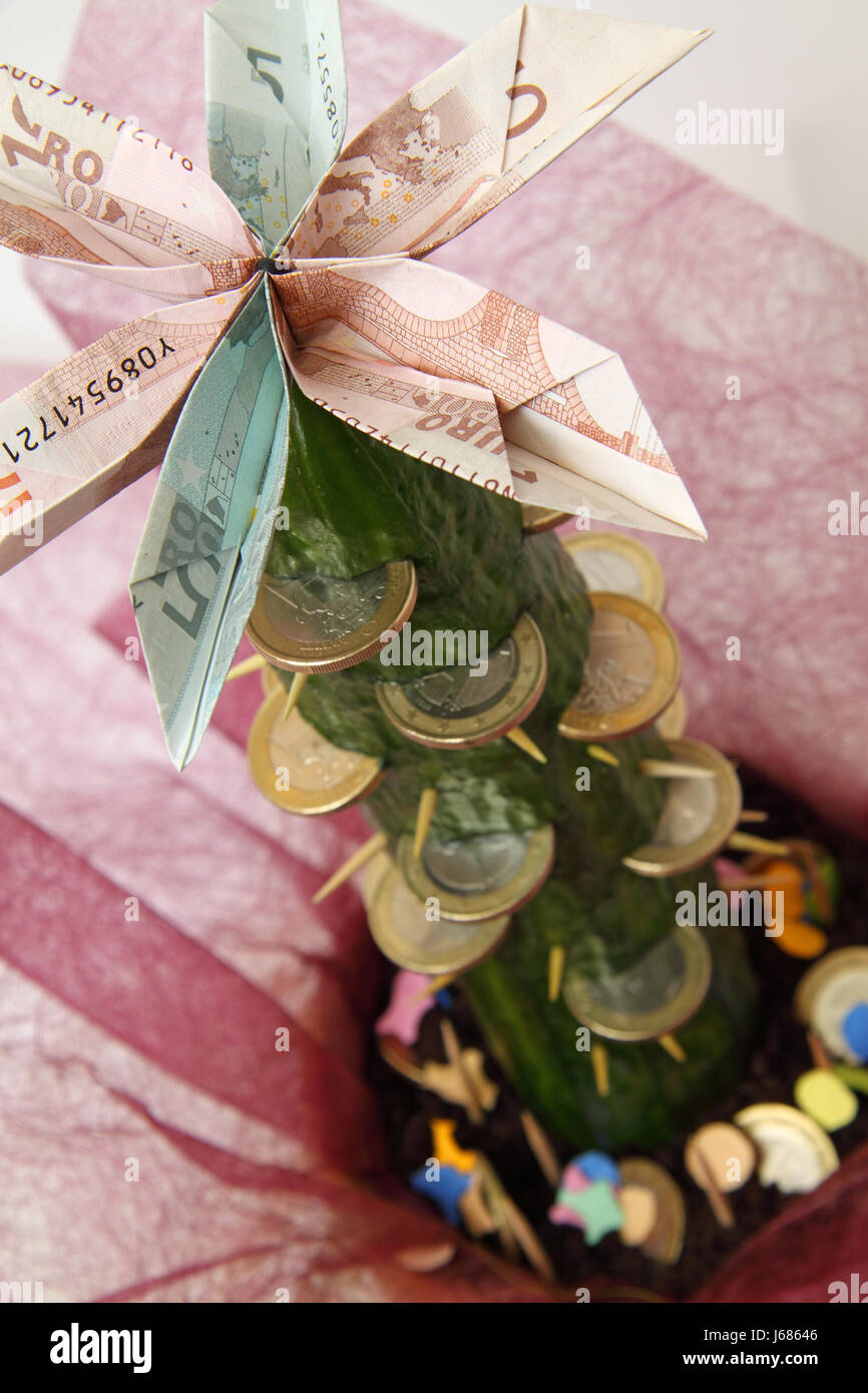 Euro Coins Gift Bank Notes Cactus Donation Birthday Currency Cucumber Vegetable