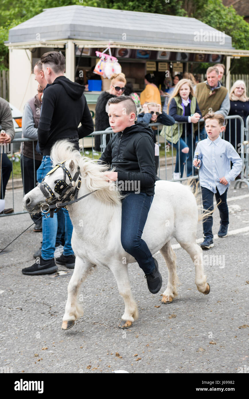 Wickham, Hampshire, United Kingdom. 20th May, 2017. Wickham Horse Fair. Groups of gipsy travellers meet with their - Stock Image