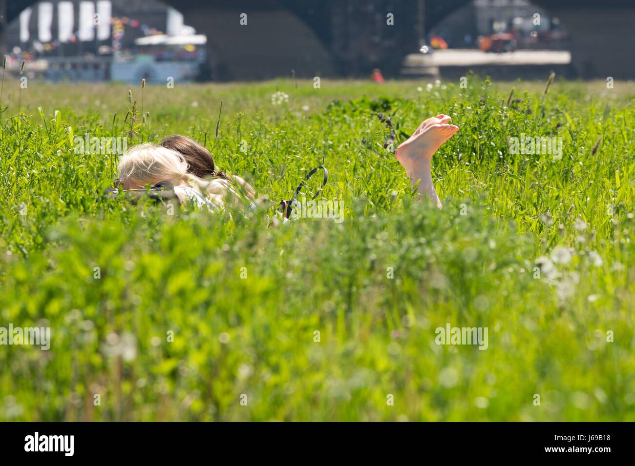 Dresden, Germany. 18th May, 2017. Two women enjoy the sun on a meadow by the Elbe river in Dresden, Germany, 18 - Stock Image