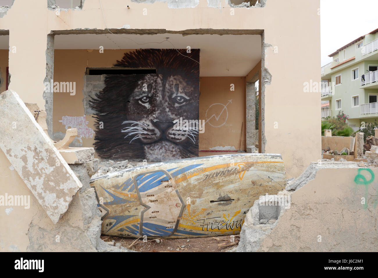 Lion image on an abandon building by a local Street Artist - Stock Image