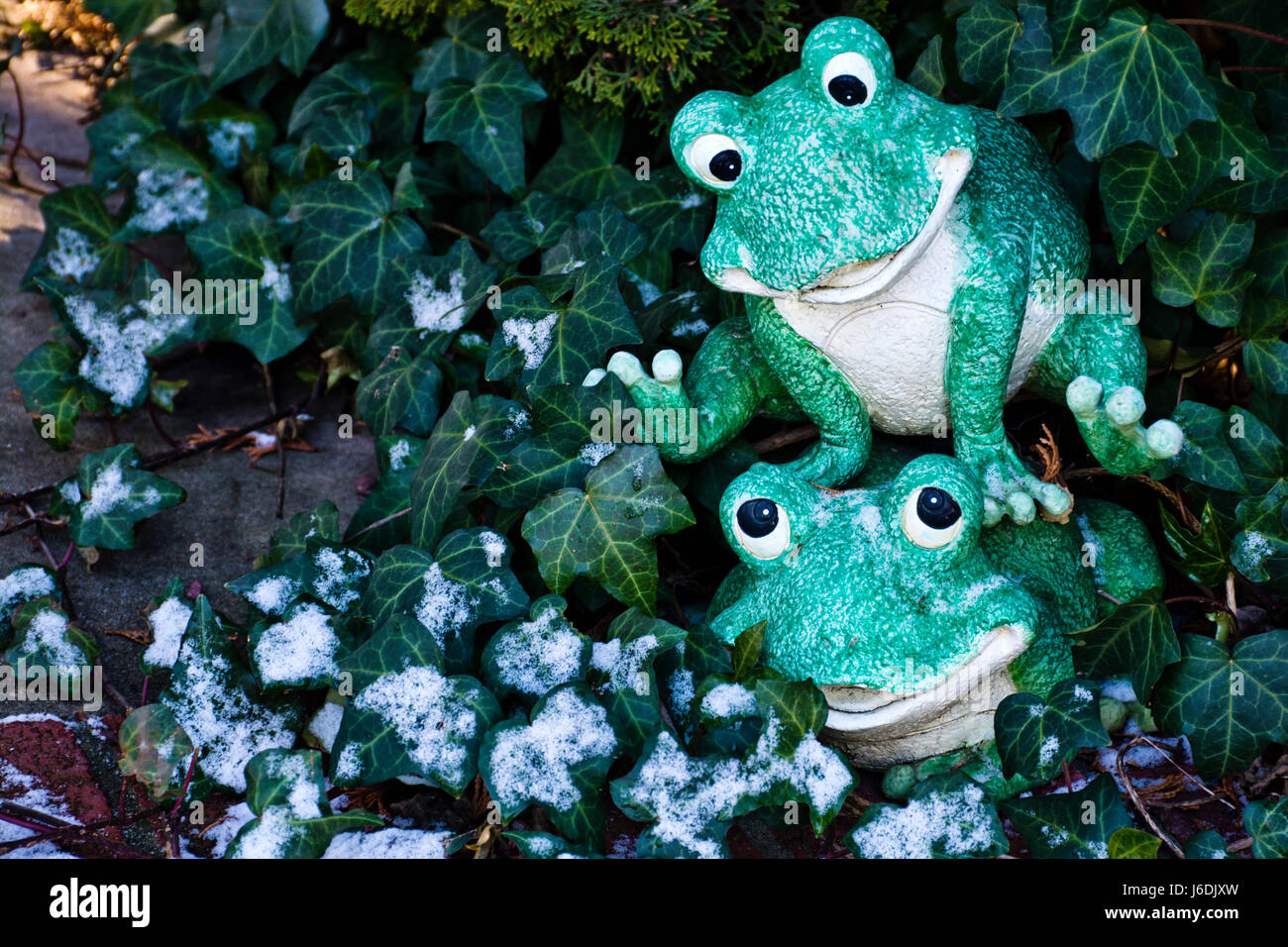 Cute green frog fellows playing in green grass. - Stock Image