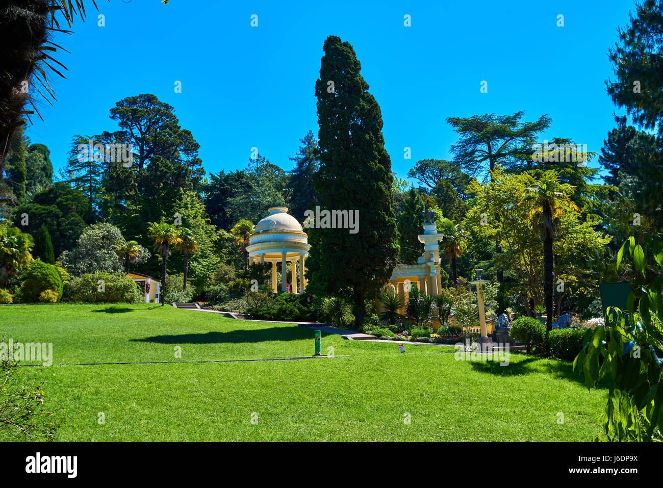 Sochi Arboretum is a museum of nature 47