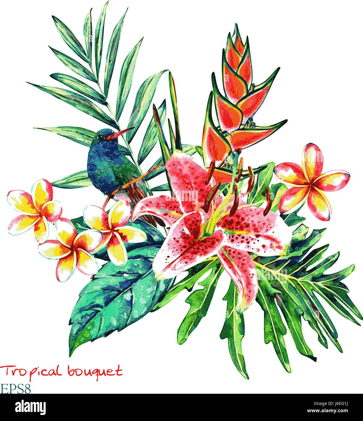 Tropical bouquet. Watercolor exotic plants: flowers of heliconia and ...