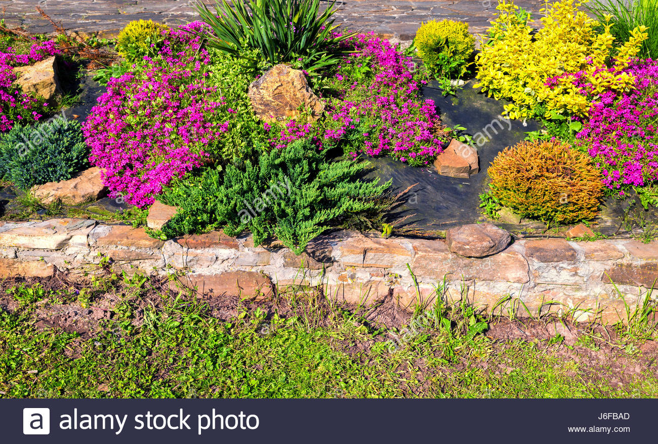 Red Stones For Garden Colorful pink red yellow rockery flowers and stones the garden stock colorful pink red yellow rockery flowers and stones the garden workwithnaturefo