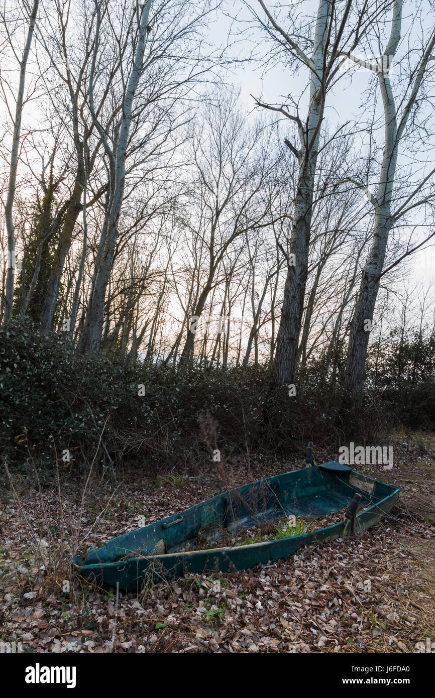 An abandoned little fishing boat near some trees, full of autumn leaves - Stock Image