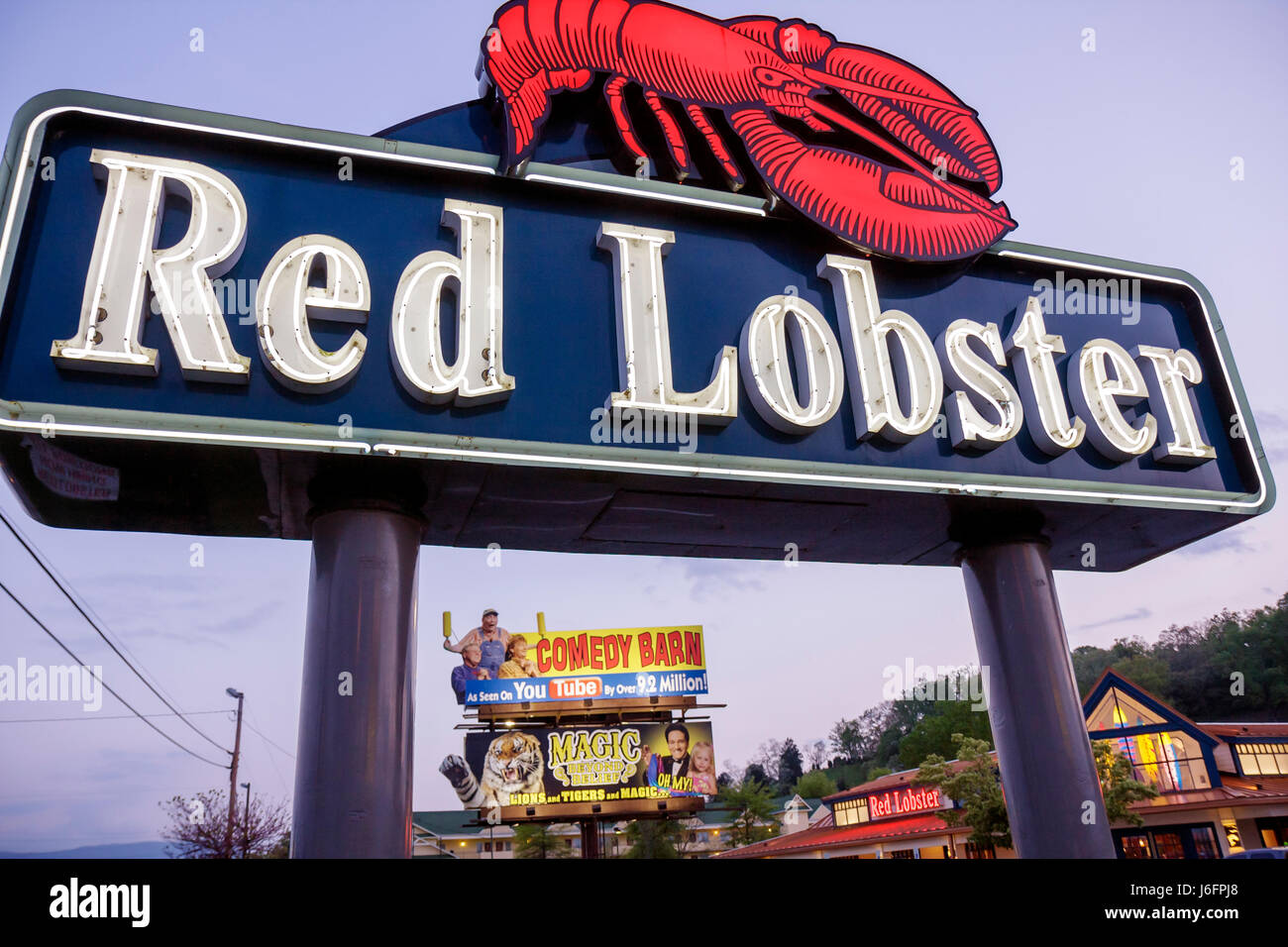 Tennessee Sevierville Red Lobster Restaurant neon sign billboard dusk exterior business chain advertising marketing - Stock Image