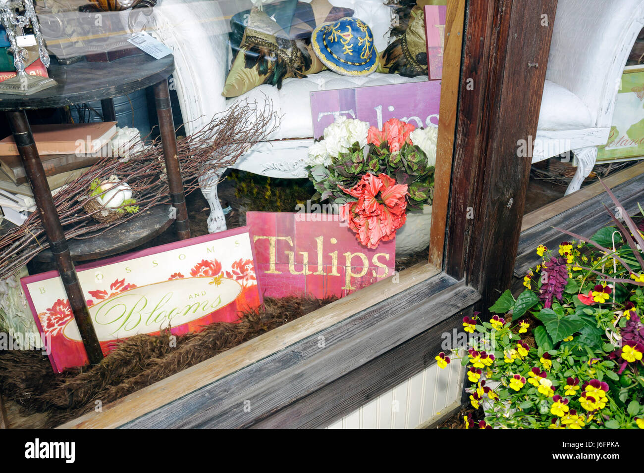 3f6a444818 Tennessee Sevierville Bruce Street shop home décor store window display  flowers merchandise - Stock Image