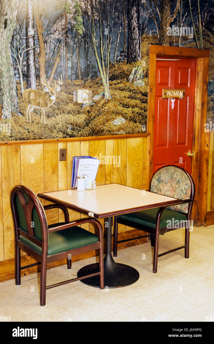 Virginia Big Island H   H Restaurant dining chairs table women s room  restroom mural near Blue Ridge Parkway bff976c40