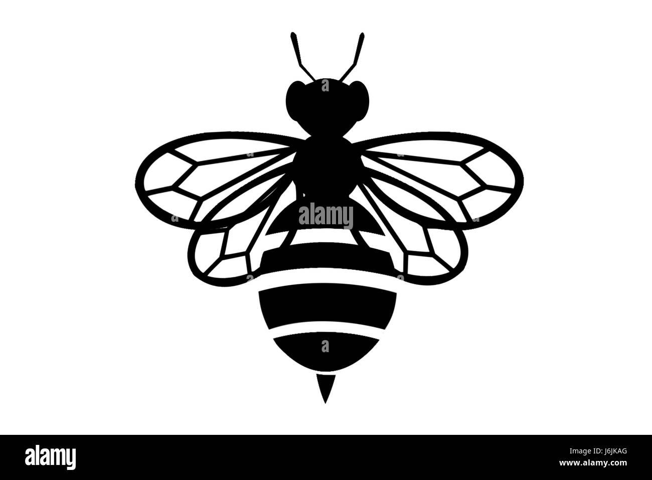 black Bee on white background symbol silhouette icon - Stock Image