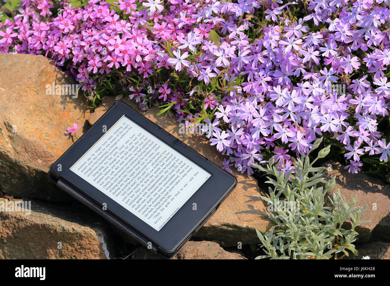 An electronic book reader on the stone - Stock Image