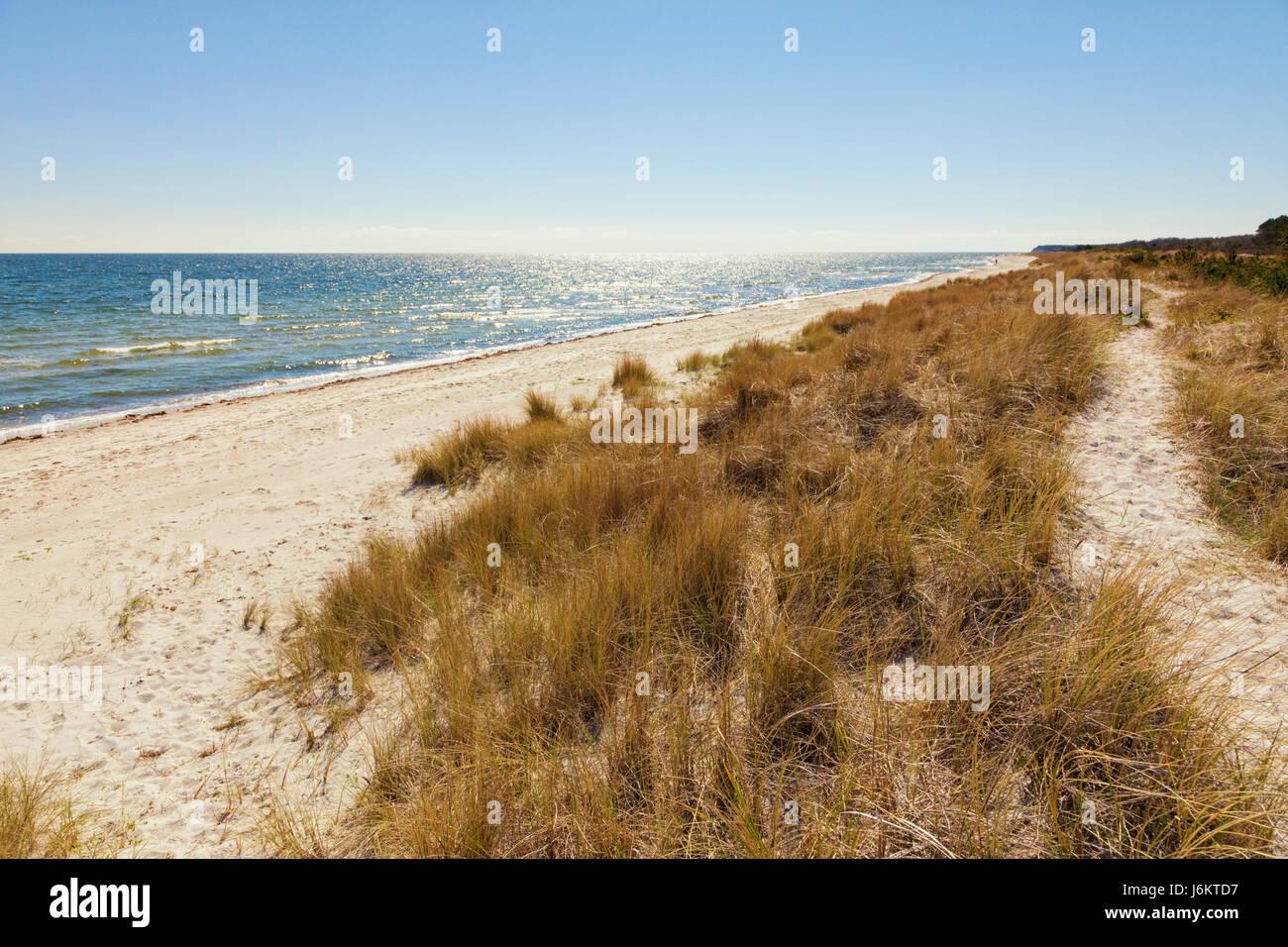 Beach and dunes at Grenaa, Baltic Sea coast of Djursland peninsula, Jutland, Denmark - Stock Image