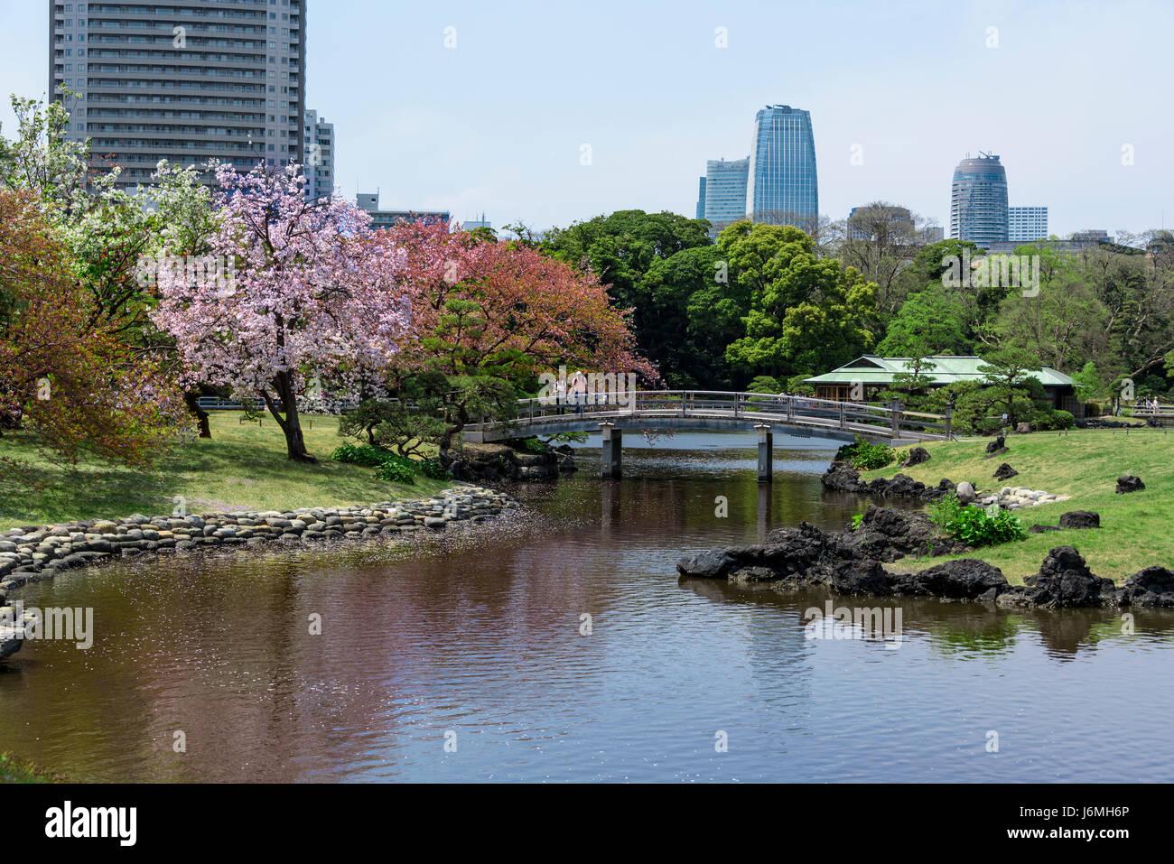 Hama Rikyu Japanese gardens Tokyo. - Stock Image