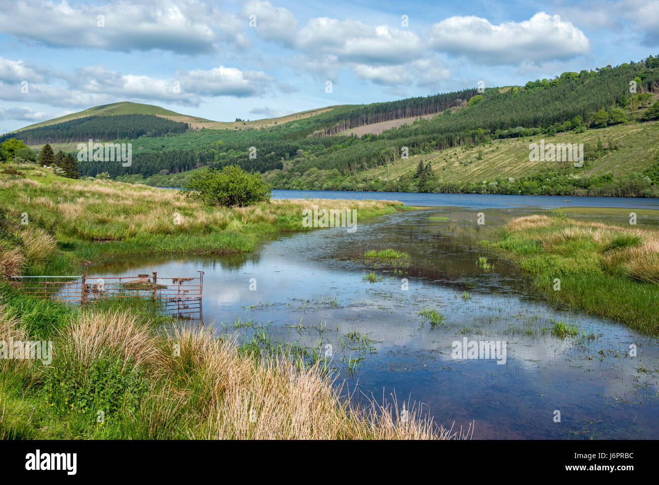 Forest and hills in the Brecon Beacons National Park Wales - Stock Image