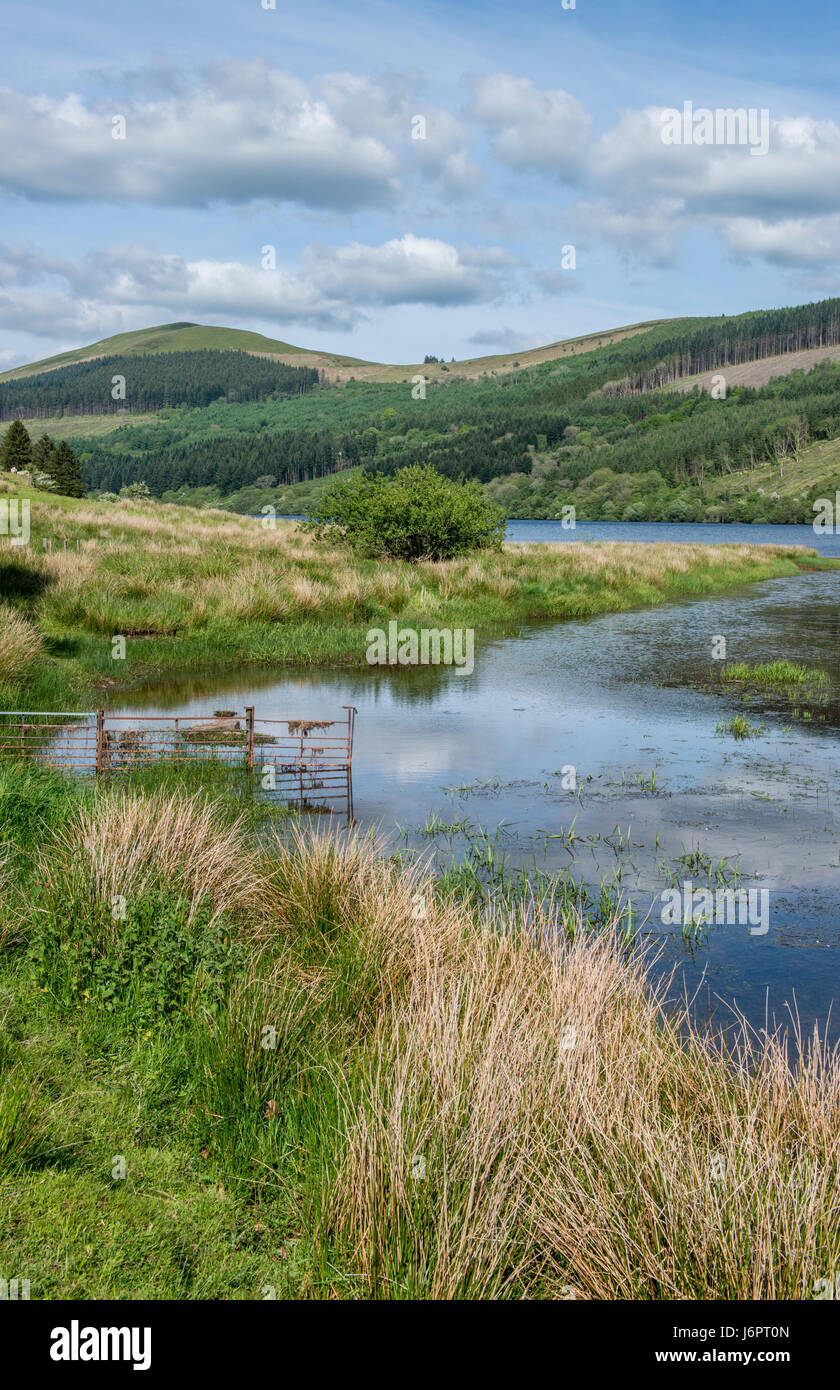 Top of Talybont Reservoir Brecon Beacons National Park - Stock Image