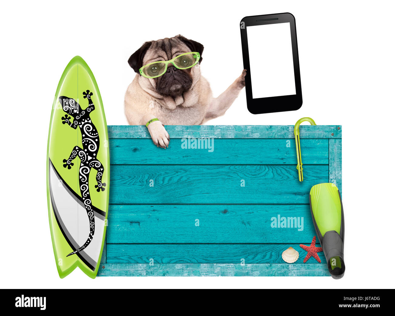 Pug dog on vacation with blue vintage wooden beach sign surfboard pug dog on vacation with blue vintage wooden beach sign surfboard and mobile phone tablet isolated on white background voltagebd Choice Image
