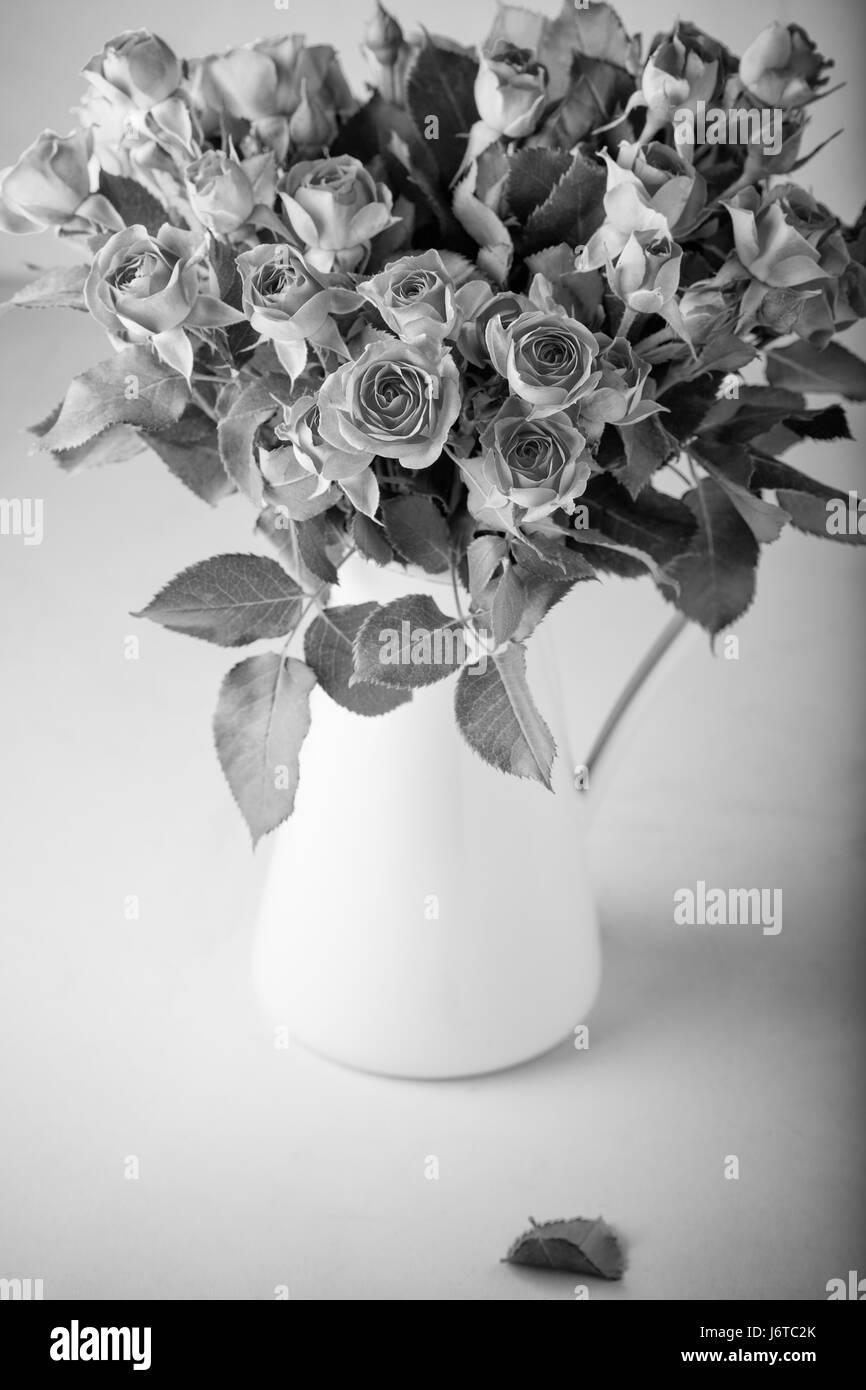 Flower Vase Black And White Stock Photos Images Alamy