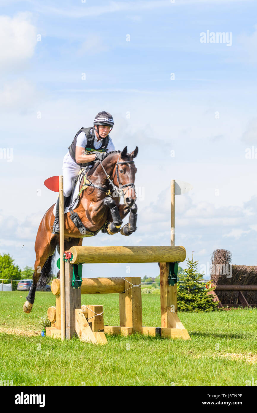 Rockingham Castle, Corby, UK. 21st May, 2017. The New Zealand rider Dan Jocelyn and his horse Fjury clear a narrow Stock Photo